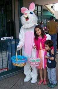 Easter bunny at Mamas Minerals