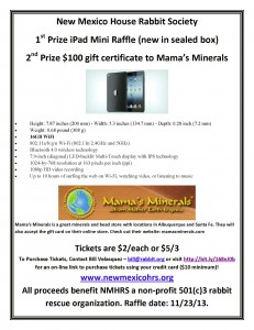 iPad Mini Raffle #2