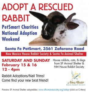 PetSmart Adoption Event 2014