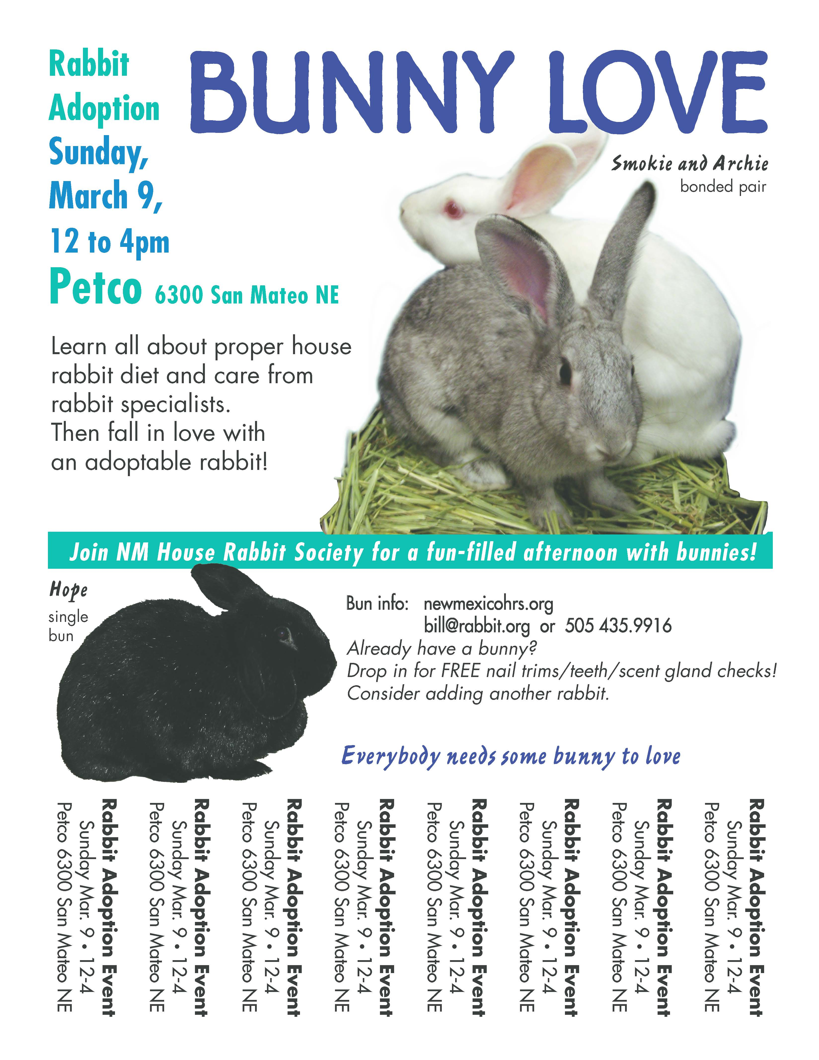 Bunny Love poster