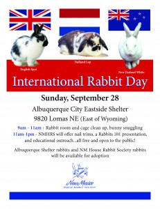 Intnl Rabbit Day poster