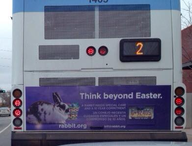 Santa Fe Bus Tail