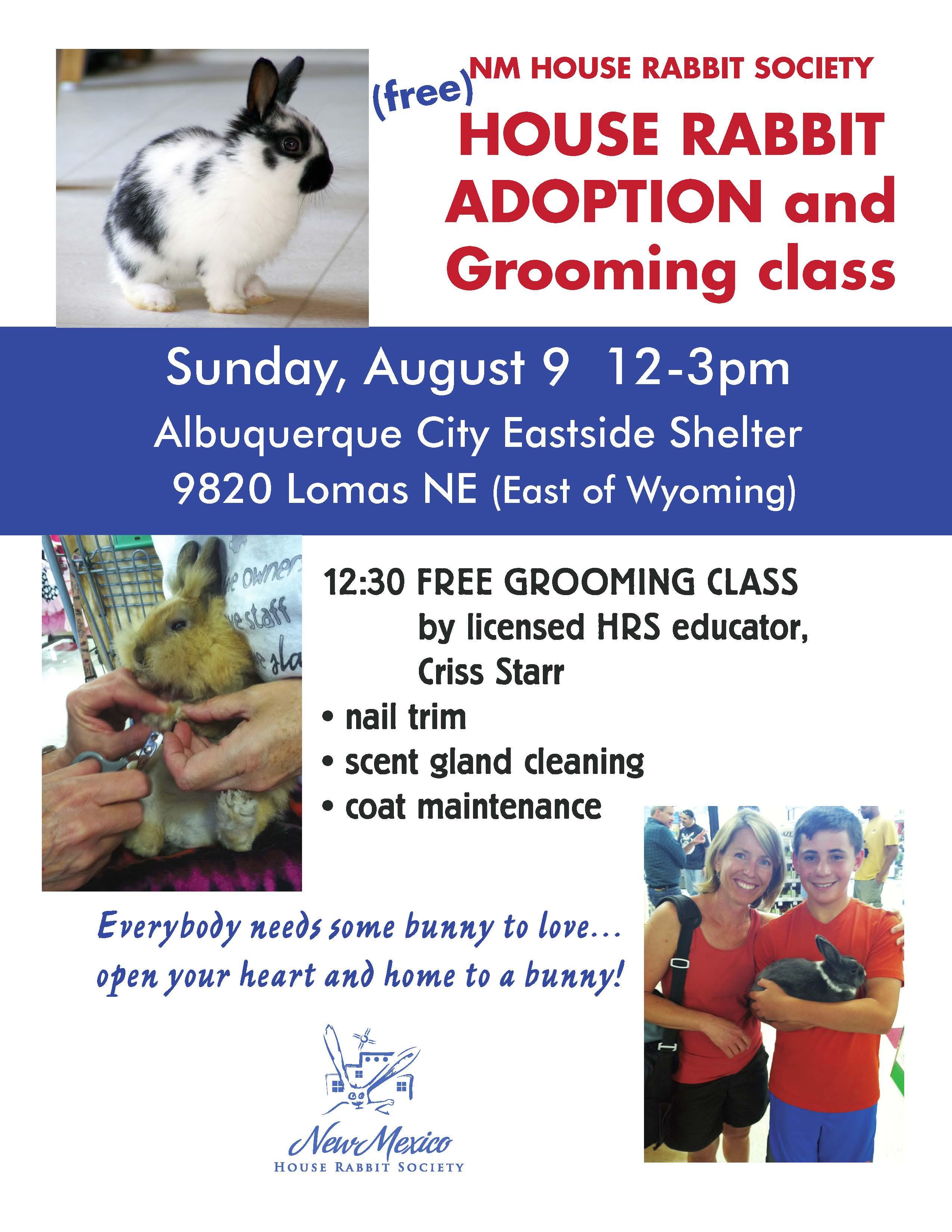 Aug 2015 Rabbit adoption (1)
