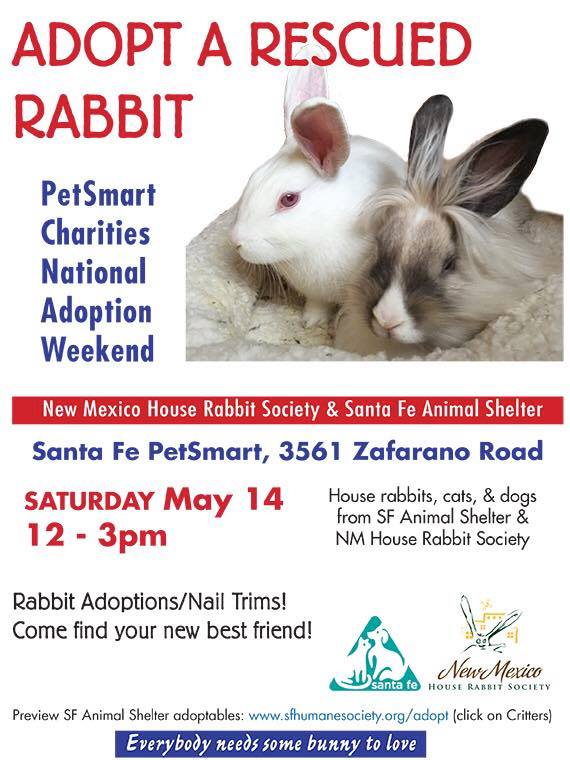Santa Fe Adoption event