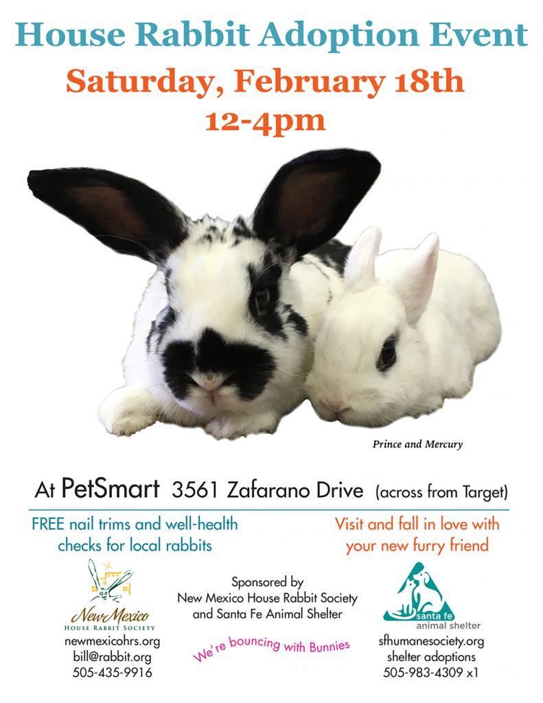 Petsmart-adoption02-18-17-1000px